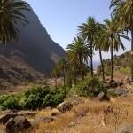 HeldInnen Reise La Gomera Fortbildung aktiv in und mit der Natur